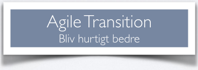 Agile_Transition.png